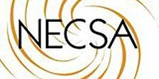 Treasure Island Vegas. NECSA