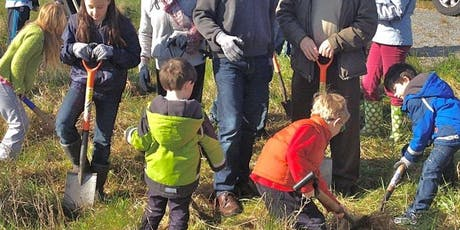 Galway: Mass Tree Planting to Help in the war against Climate Change tickets