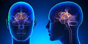 Complex Trauma and Trauma Informed Care for frontline s...