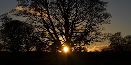 Shamanic Practice Day - Winter Solstice tickets