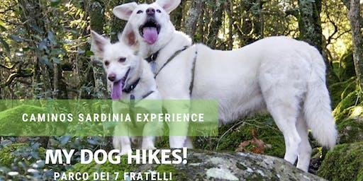 """Dog hiking! Passeggiata a sei zampe nel parco dei """"Sette Fratelli"""""""