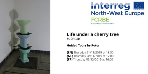 Guided Tours through Life Under a Cherry Tree (NL)