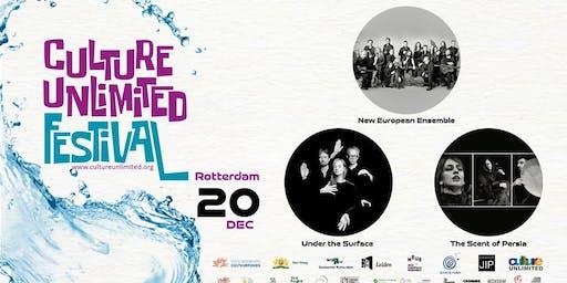 Under The Surface | Trio SayeRoshan | New European Ensemble