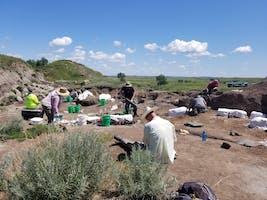 2020 North Dakota Public Fossil Digs (Registration Starts Feb. 1)