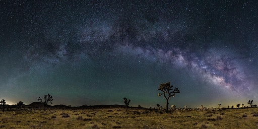 Joshua Tree National Park Night Skies Photography Workshop