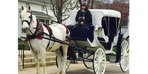 Streeterville Carriage Ride (2019-11-23 starts at 11:00 AM)