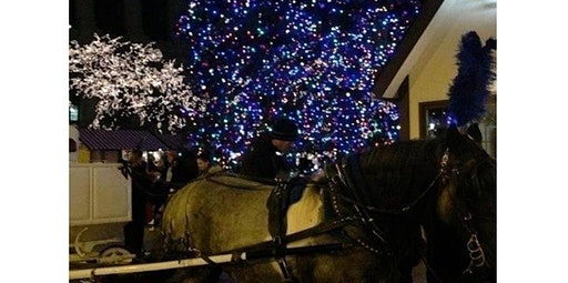 Christmas Carriage Ride (12-20-2019 starts at 11:00 AM)