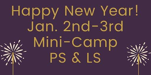 Palm Valley School Jan. 2-3 Mini-Camp
