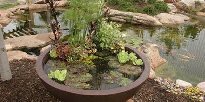 DIY Patio Pond Seminar