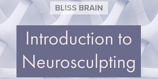 Introduction to Neurosculpting