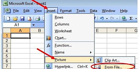 Microsoft Excel for Business #2