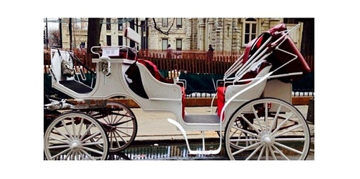 Gold Coast Carriage Ride (12-20-2019 starts at 1:00 PM)