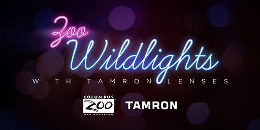 Shoot the Columbus ZOO WILDLIGHTS with Tamron Lenses!