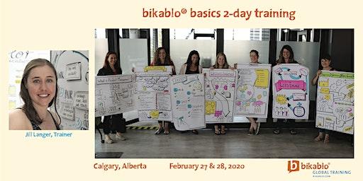 Bikablo® Basics 2-Day Visual Training