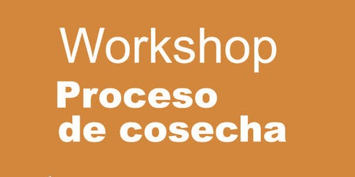 #4 Workshop: Proceso de cosecha