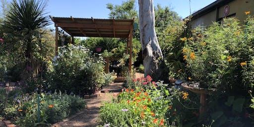 Award Winning Sustainable Garden Tour