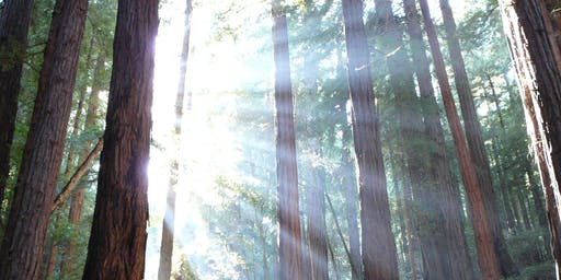 Meditation & dharma talk daylong with Tina Rasmussen, Ph.D