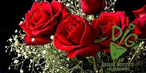 Desert Institute of Gardening: Low Desert Roses