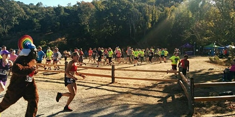 The Honey Badger Half/10K/5K (and BREWFEST) tickets