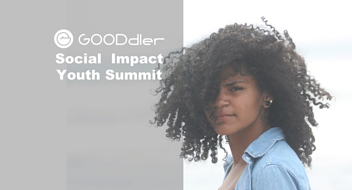 GOODDLER Social Innovation Youth Summit image