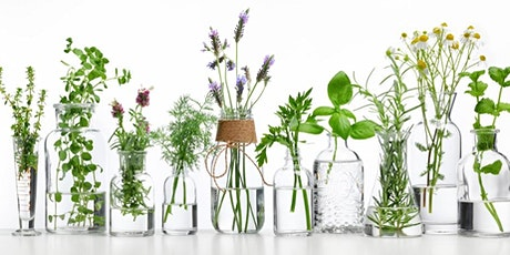 Sustainable Living: Skincare from your Garden tickets
