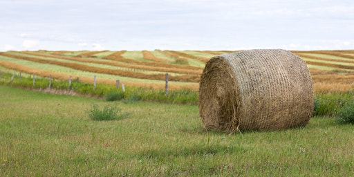 Farming and Ranching for the Bottom Line