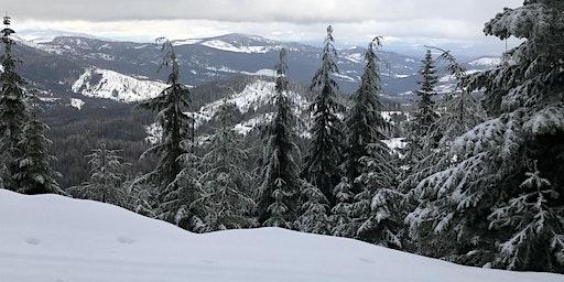 First Day Hike - Mount Spokane Cross-Country Ski