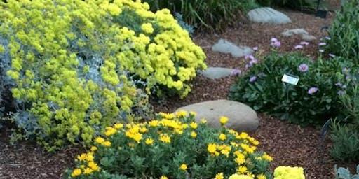 California Native Plant Society: Start Your Native Spring Garden Now