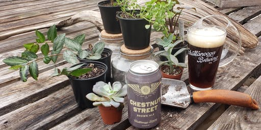 Beer + Terrarium Workshop