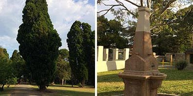 Gladesville Hospital Cemetery Memorial