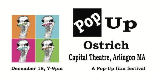 Screaming Ostrich Pop-Up Film Festival