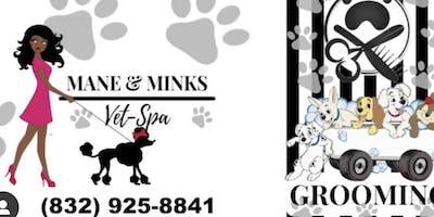 Mane and Minks Popup Animal Shoot