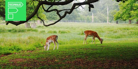 Dunham Massey: Freshwalks Netwalking Event tickets