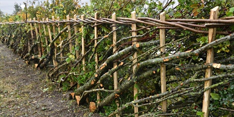 Hedgelaying Course tickets