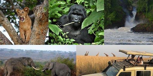 UGANDA: LA TERRA DEI GORILLA