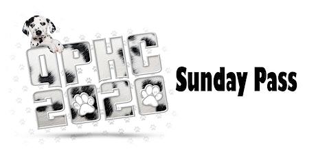 QPHC 2020 Sunday Pass tickets