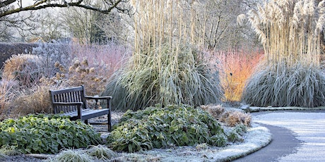 The Winter Garden – 'Talk and Walk' at St Timothee, Berkshire morning tickets