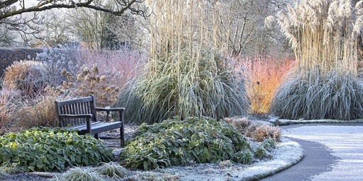The Winter Garden – 'Talk and Walk' at St Timothee, Berkshire afternoon