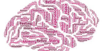 Your Brain: Neuroscience & Leadership