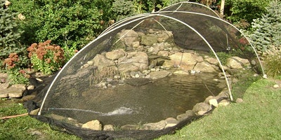 Fall Pond Netting Seminar