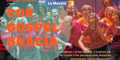 Concert de Gospel Gràcia per la Marató de TV3