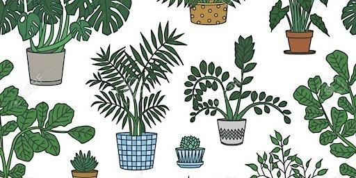 Winona Plant Swap