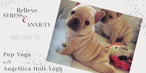 Pup Yoga