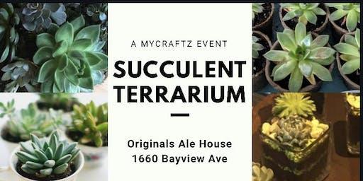Succulent Terrarium - Planting