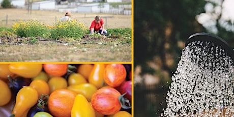 Teton Valley Master Gardener Program tickets