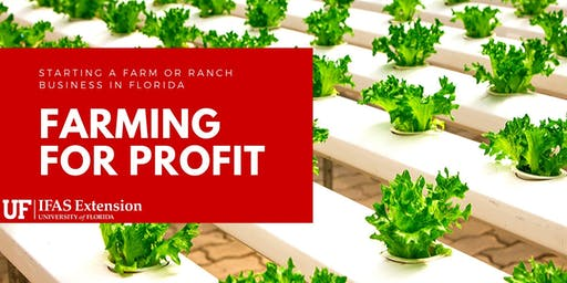 Farming For Profit- Starting a Farm Business in Florida