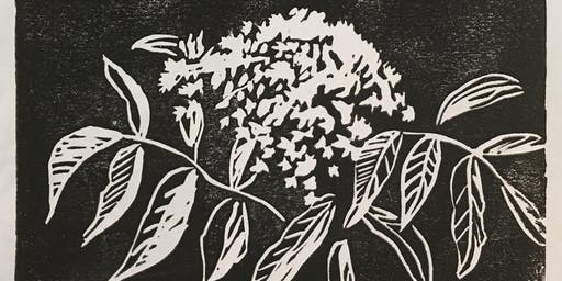 Prints and Plants:   Elderberry and Linocut!