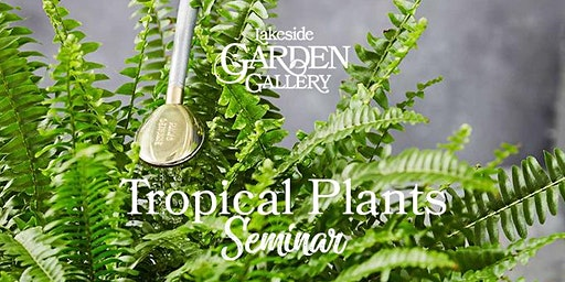 Lakeside Garden Gallery Tropical Plants Seminar