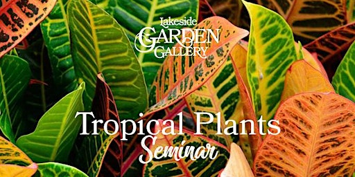 Lakeside Garden Gallery Tropical Plant Re-pot Seminar