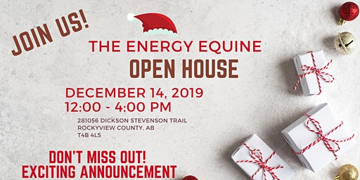 2019 Energy Equine Christmas Open House